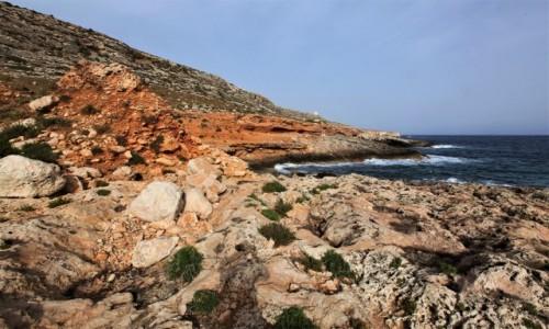 Zdjęcie MALTA / Siġġiewi  / Għar Lapsi  / Jak malowane