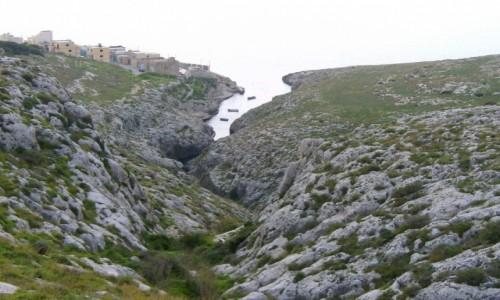 Zdjecie MALTA / Wied iz Zurriq / Blue Grotto / Zatoczka