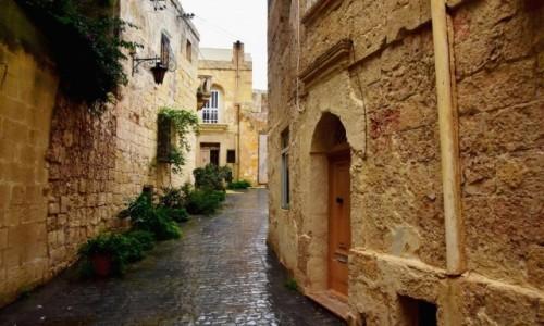 MALTA / środkowa Malta  / Mdina / Deszczowy dzień w Mdinie 3