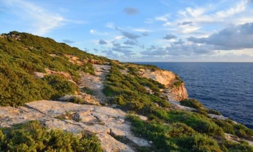 MALTA / wyspa Gozo / okolice Xlendi / Południowo-zachodnie wybrzeże Gozo