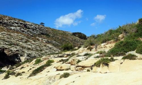 Zdjęcie MALTA / Gozo / Xlendi  / Lokalne pagórki