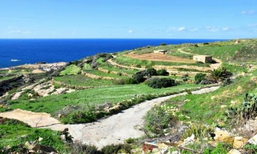 Zdjecie MALTA / wyspa Gozo / zachodnie wybrzeże / Zachodnie wybrzeże wyspy