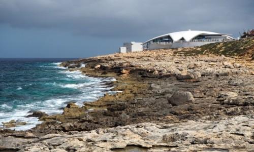 Zdjęcie MALTA / Malta / Bugibba / Akwarium w Bugibba