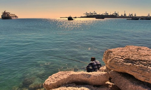 Zdjecie MALTA / - / Marsaxlokk / Bajka o rybaku i złotej rybce (może się uda)