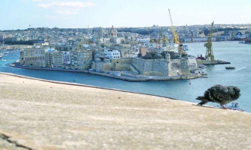 MALTA / Malta / Valetta / Mur obronny