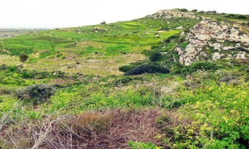 MALTA / Malta / Mdina / Krajobraz maltański