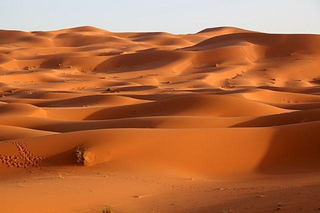 Zdjęcia: okolice Erfoud, południowo-wschodni kraniec Tafilant, Sahara #16, MAROKO