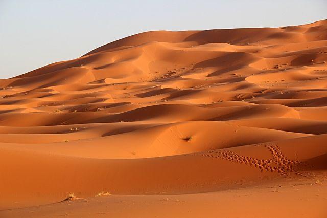 Zdjęcia: okolice Erfoud, południowo-wschodni kraniec Tafilant, Sahara #17, MAROKO