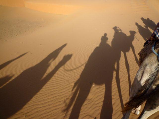 Zdjęcia: okolice Erfoud, południowo-wschodni kraniec Tafilant, Sahara - Zdjęcie z cameli., MAROKO