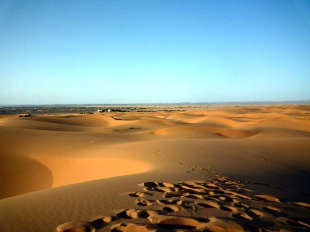Zdjęcia: okolice Erfoud, południowo-wschodni kraniec Tafilant, Sahara - ślady na piasku., MAROKO