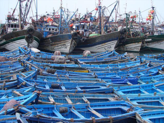 Zdj�cia: Essaouria - port , w oczekiwaniu na po��w , MAROKO