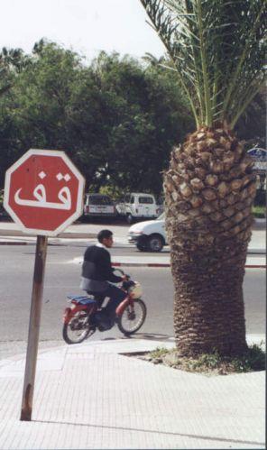Zdjęcia: Agadir, Znak Stop, MAROKO