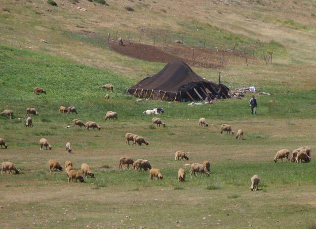 Zdj�cia: maroko, maroko, camping?, MAROKO