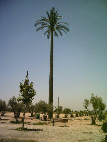 Zdjęcia: Marrakech, Sztuczna palma-przekaźnik telefoni komórkowej, MAROKO