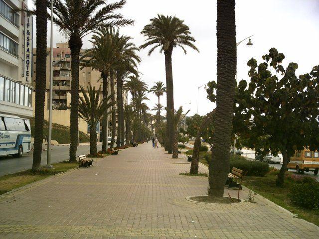Zdjęcia: Tanger, AVENUE D'ESPAGNE, MAROKO