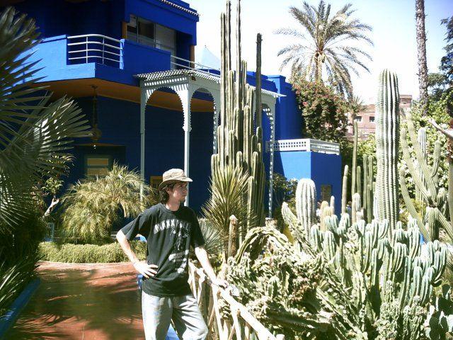Zdjęcia: Marrakech, Jardin Majorelle, MAROKO