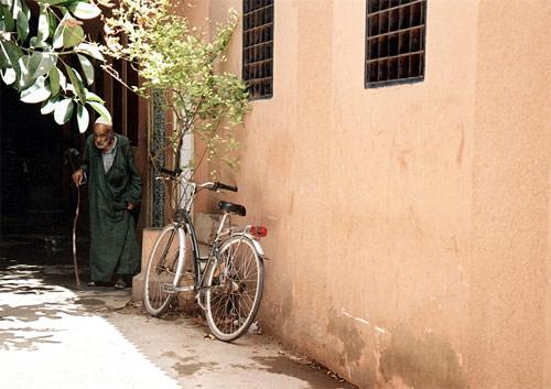 Zdj�cia: Essaouira, Bezdro�a Maroka, MAROKO