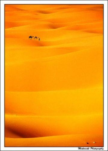 Zdjęcia: Merzouga - Erg Chebii, Południe, Camel Trek, MAROKO