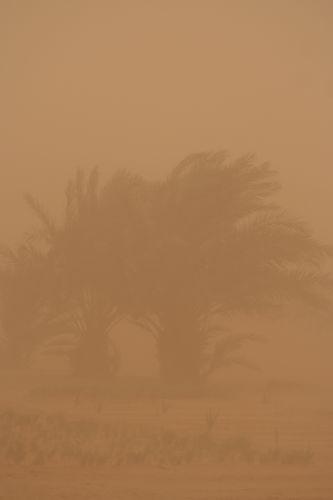 Zdjęcia: Sahara, Burza piaskowa, MAROKO