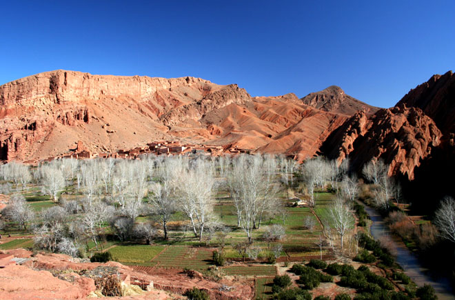 Zdjęcia: Dolina Dades, Maroko, ogrody III, MAROKO