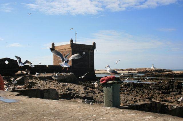 Zdjęcia: Es-Sawira, wybrzeże Maroka, Przekraczając bramę Es-Sawiry, MAROKO