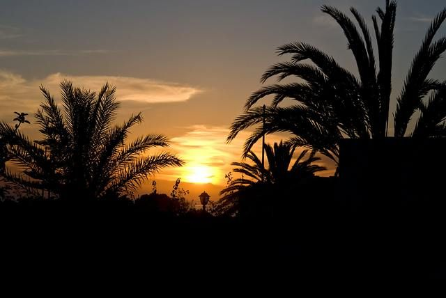 Zdjęcia: Agadir, Kiczyk o zachodzie słońca, MAROKO