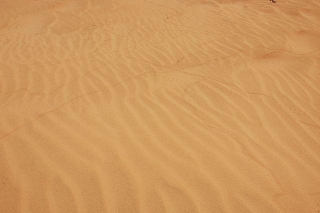 Zdjęcia: Gdzieś na pustyni, Ślady, MAROKO