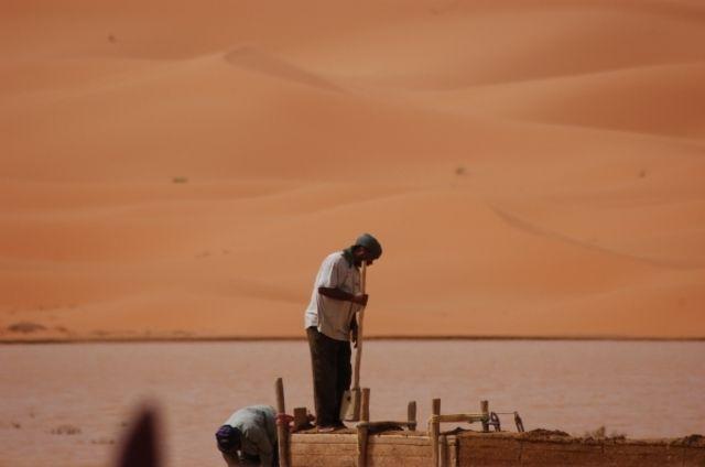 Zdjęcia: Sahara, Poranek na pustyni, MAROKO