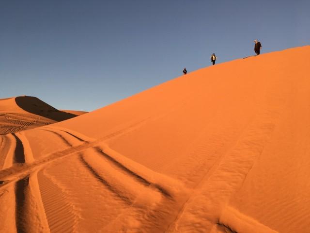 Zdjęcia: Sahara - Erfoud, Sahara - Erfoud, Maroko -Sahara, MAROKO