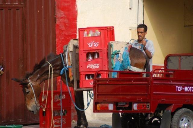 Zdjęcia: Fez, Coca Cola, MAROKO