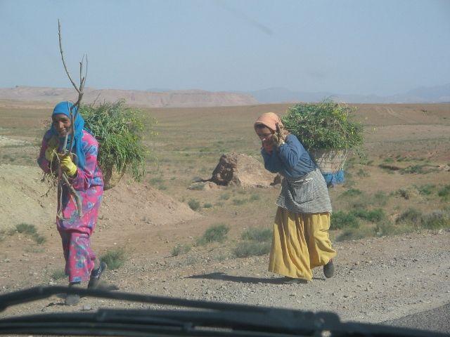Zdjęcia: gdzies w Maroku, ah te kobiety !, MAROKO