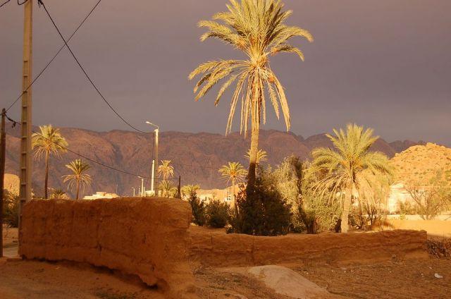 Zdjęcia: południe, Maroko5, MAROKO