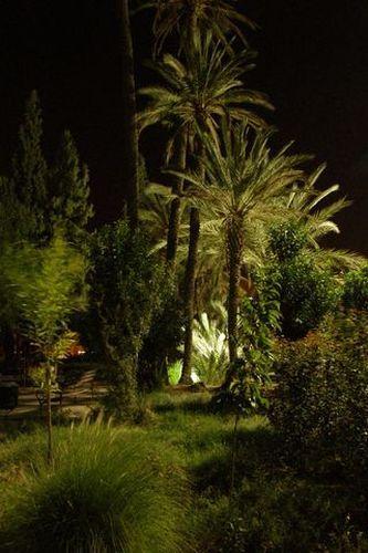 Zdjęcia: Marrakesh, W zwykłym parku na wieczornym spacerku... ; ], MAROKO