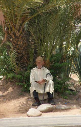 Zdj�cia: Marrakesh, Staruszek pod palm� - szuka� cienia jak i ja ; ], MAROKO