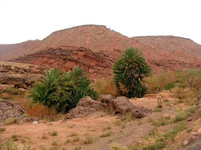 Zdjęcia: góry, Atlas Średni, w górach Atlasu, MAROKO