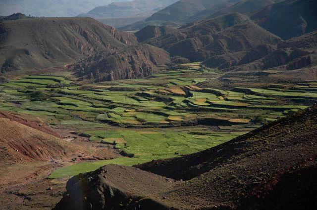 Zdj�cia: g�ry Atlas, gdzie� w drodze do Warzazat, g�ry Atlas, maroka�skie plenery - tarasy zieleni, MAROKO