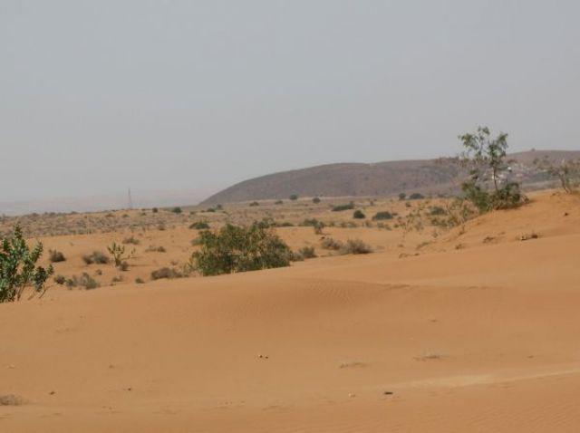 Zdjęcia: Massa, Wiosna w Maroku, MAROKO