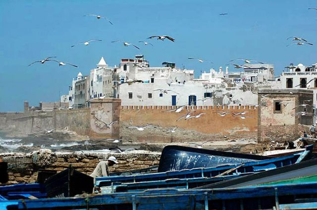 Zdjęcia: Essauira, nad oceanem, Essauira widok z portu, MAROKO