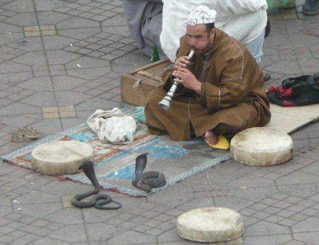 Zdjęcia: Jemaa el-Fna, Marrakesz, Zaklinacz węży, MAROKO