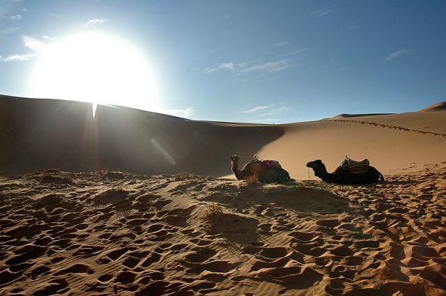 Zdjęcia: Merzuga, południe, pod słońce :), MAROKO