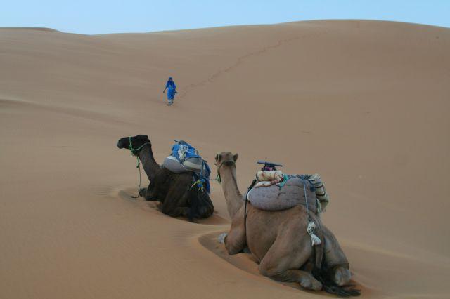 Zdjęcia: Erg Szebbi, Sahara, Odpoczynek, MAROKO