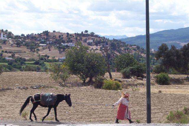 Zdjęcia: Szefszawan, Góry Rif, Berberyjka, MAROKO
