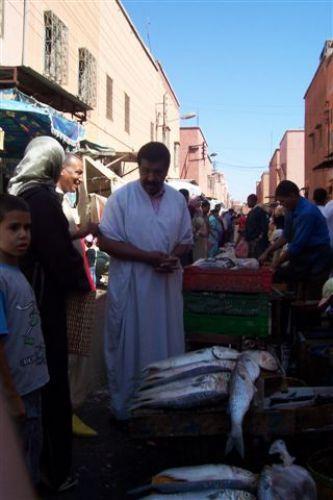 Zdjęcia: Marakesz, Targ rybny, MAROKO