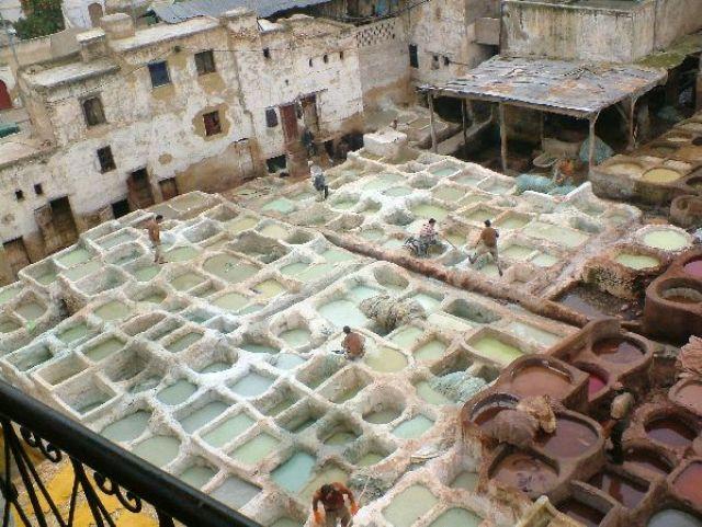 Zdjęcia: Fez, Fez, Garbarnia skór wielblądzich, MAROKO