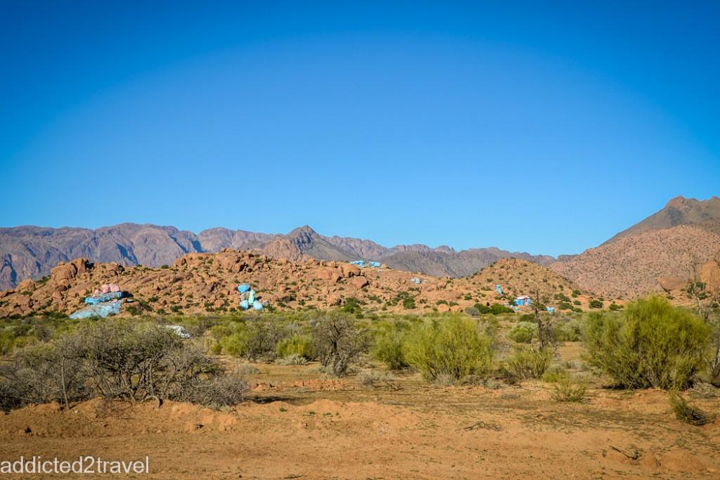 Zdjęcia: Tafraute, Tafroute, Tafraute - błękitny las, MAROKO