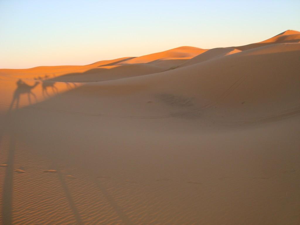 Zdjęcia: Merzouga desert, Cienie na wydmach, MAROKO