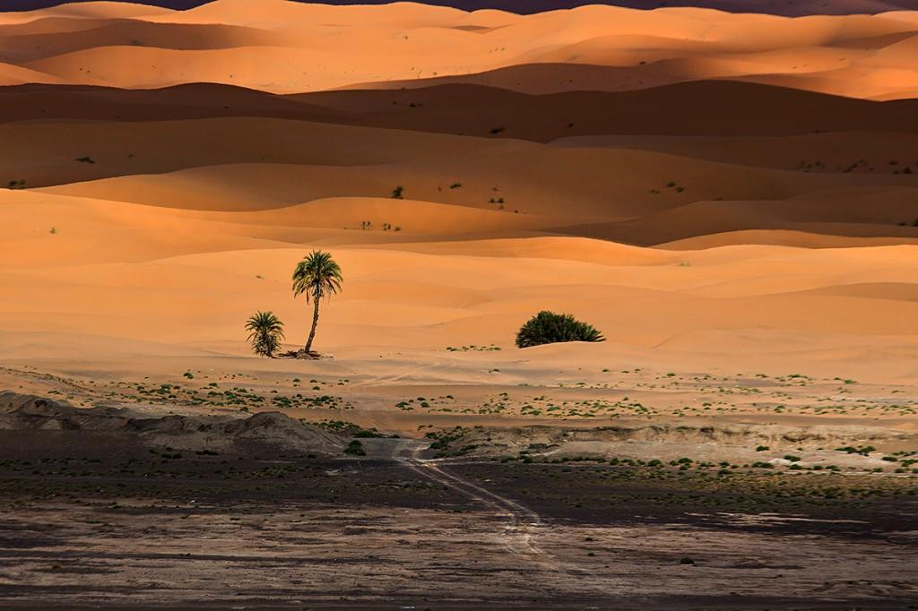 Zdjęcia: Erg Chebi, Sahara, pustynne wzory, MAROKO