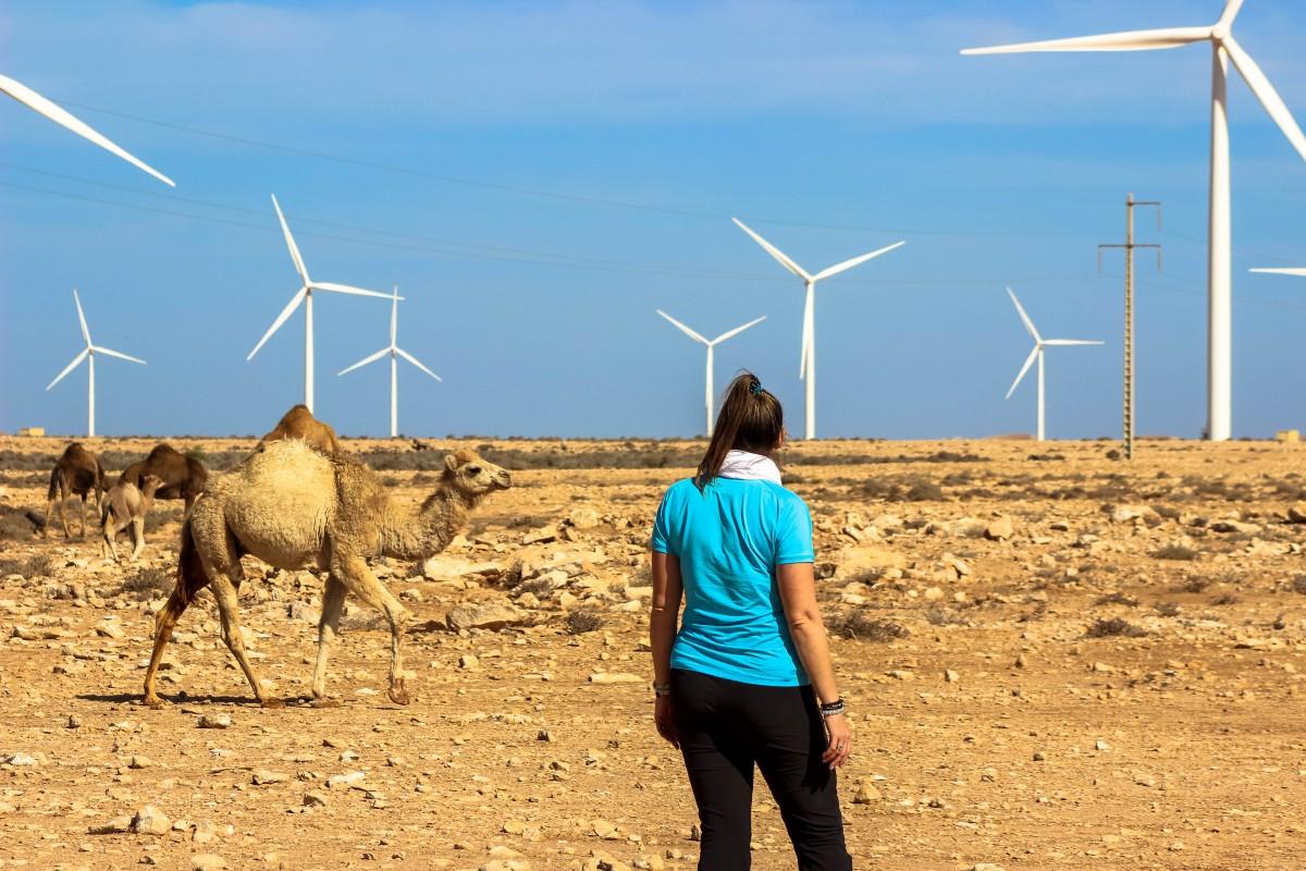 Zdjęcia: Zachodnia Sahara, Zachodnia Sahara, Miłe spotkania :) , MAROKO