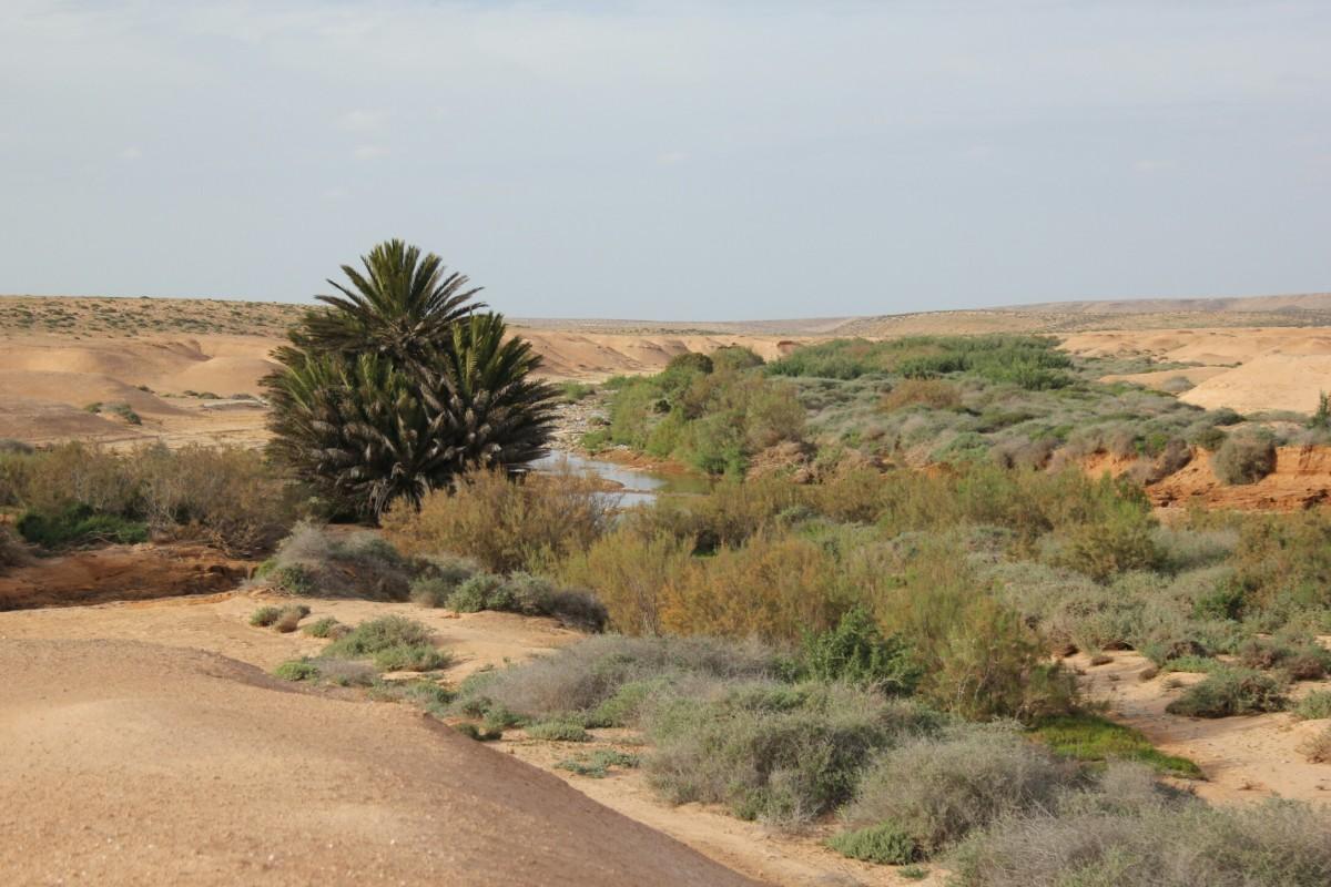 Zdjęcia: Aoreora, Maroko, Przez uedzik do Aoreory, MAROKO