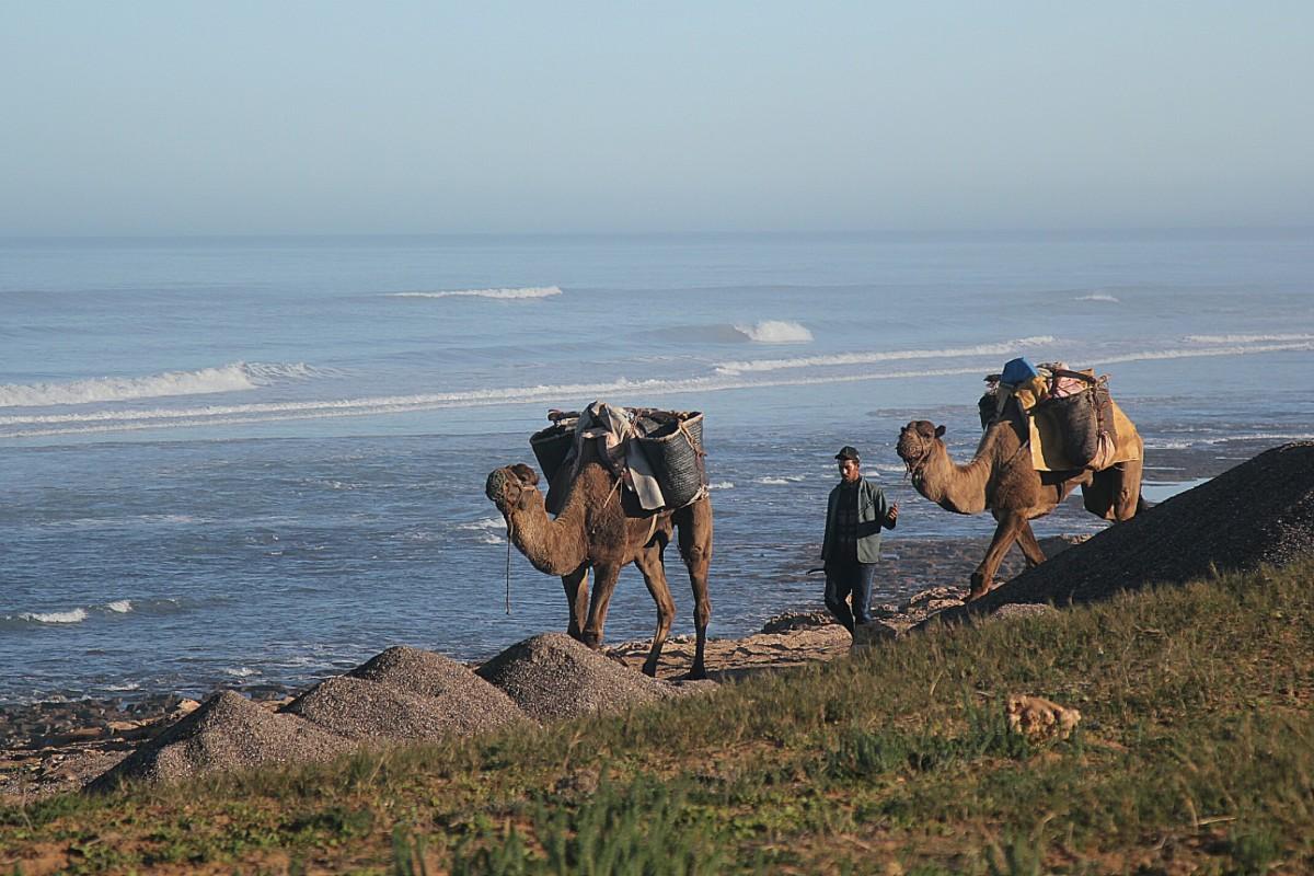 Zdjęcia: Ocean Atlantycki, Sahara Zachodnia, Transport, MAROKO